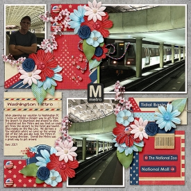 Metro_Washington-DC_June-2017.jpg