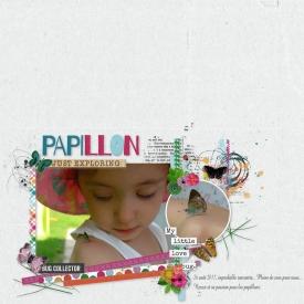 Papillon_gallery_6_Technique_whitespace.jpg
