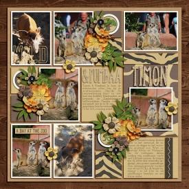 PreciousAlbumClustered1web.jpg