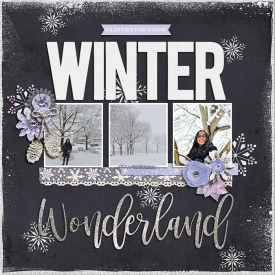 WinterWonderland_leah.jpg
