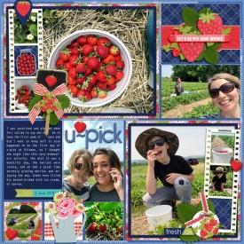 allyanne_in-my-garden-berries-700-01.jpg