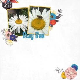 busy-bee1.jpg
