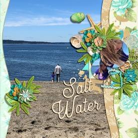 salt-water1.jpg