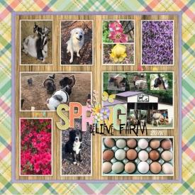 spring_believe_farm_Custom_.jpg