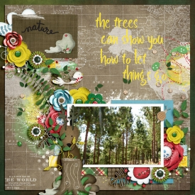 treeschall-700.jpg