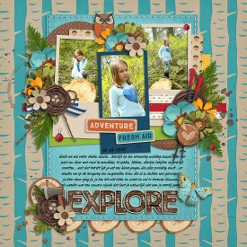Explore_copy3.jpg