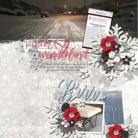 Jan-5-snow-day-HSA-winters-freeze-1-C_edited-1.jpg