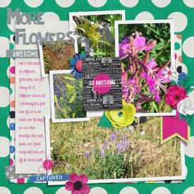 More_Flowers_Thursday_SSD_2.jpg