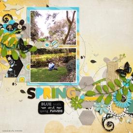 blueskiesspringflowersri1-700.jpg