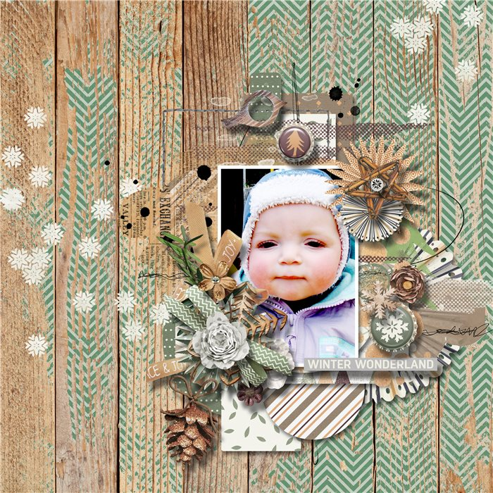 Sanka-Winter_woodland_by_WendyP_Designs