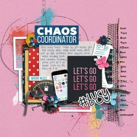 2018-07_chaos_coordinator.jpg