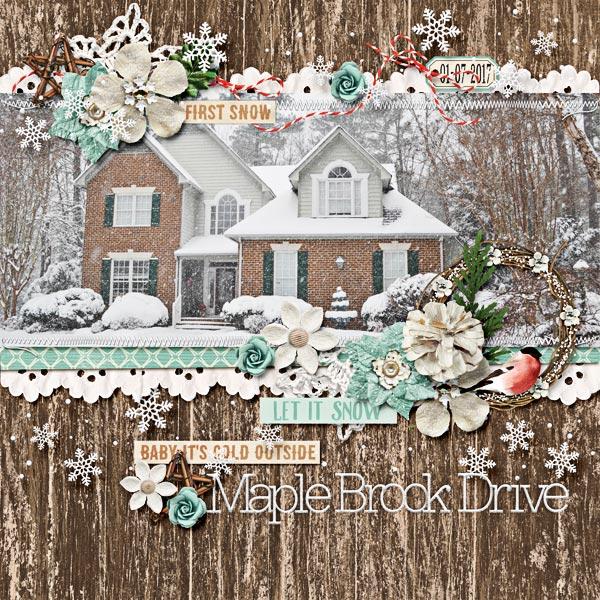 2017_0107_WinterHouse-w