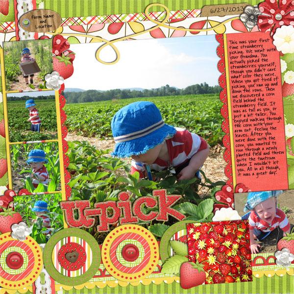 06_27_strawberry_picking
