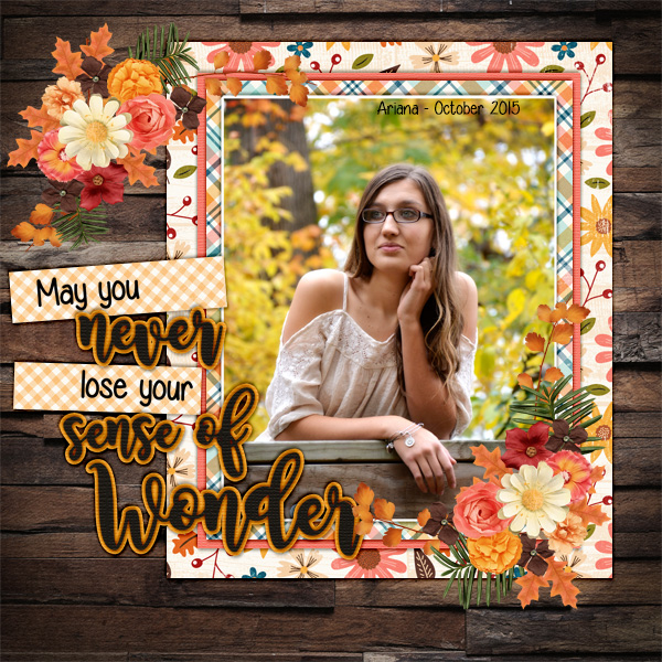 2015_oct_ariana_senior_wonder_dsi_a_cozy_autumn