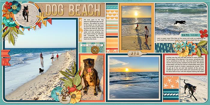 2021_01_13---dog-beach_SSD