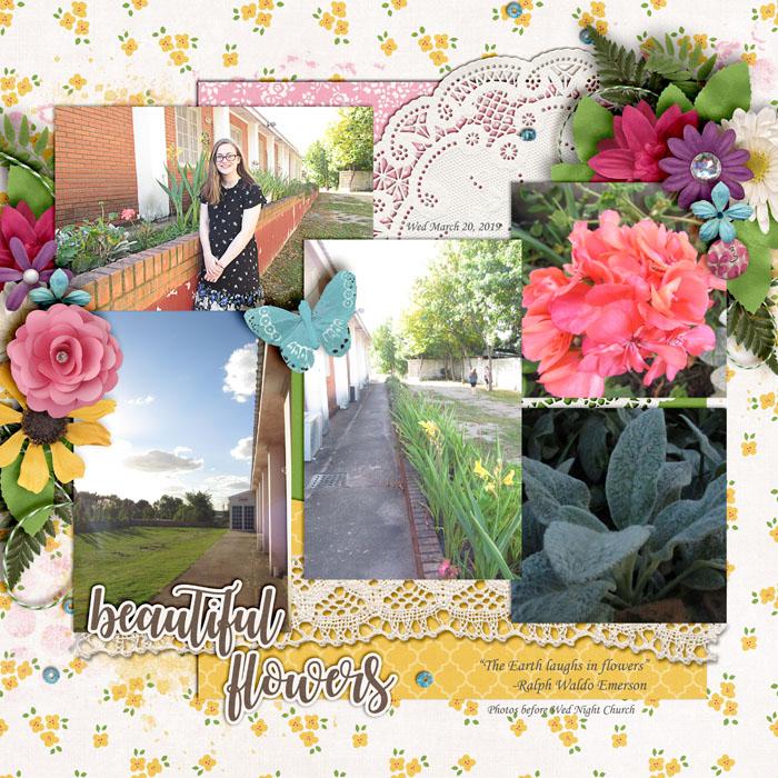 Beautiful_Flowers_Uruguay_March_20_2019_smaller