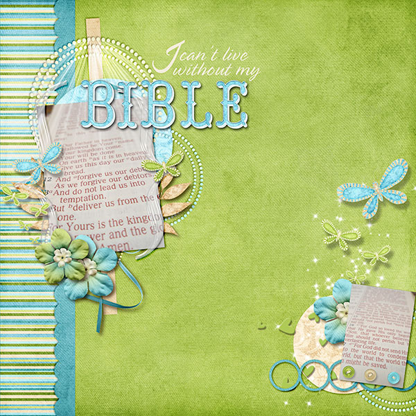 Can_t-Live-without-Bible-SSD