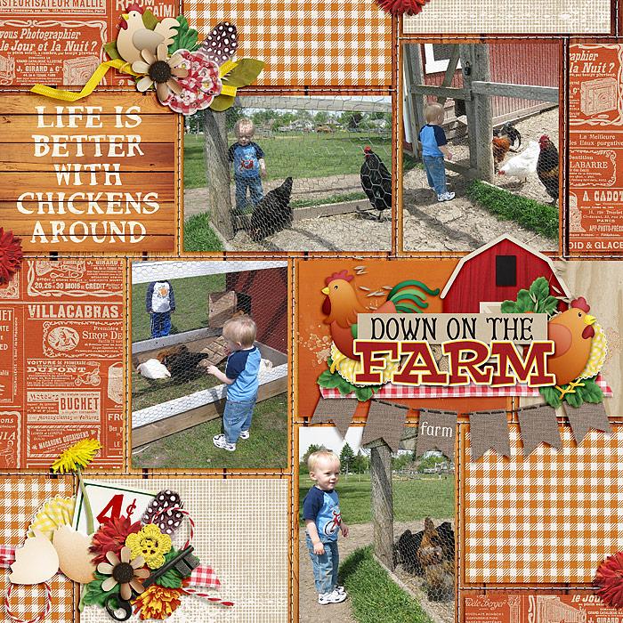 ChickensEverywhere_SSD