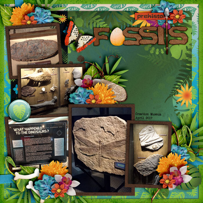 Fossils-Creation-Museum-April-2017_-smaller