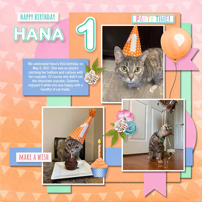 Hana_s_First_Birthday-001_copy