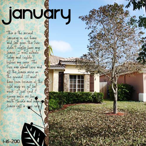 January_tree_GP
