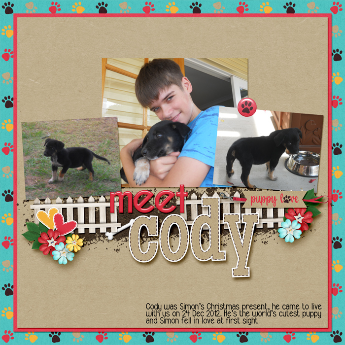 Meet_cody
