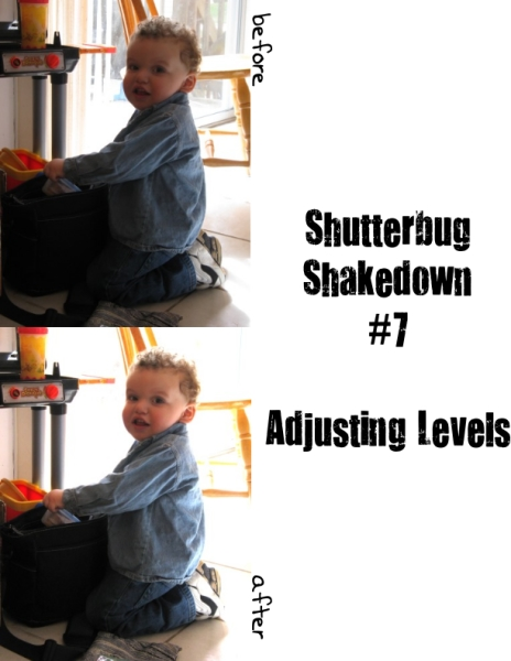 ShutterbugShakedown7_Levels