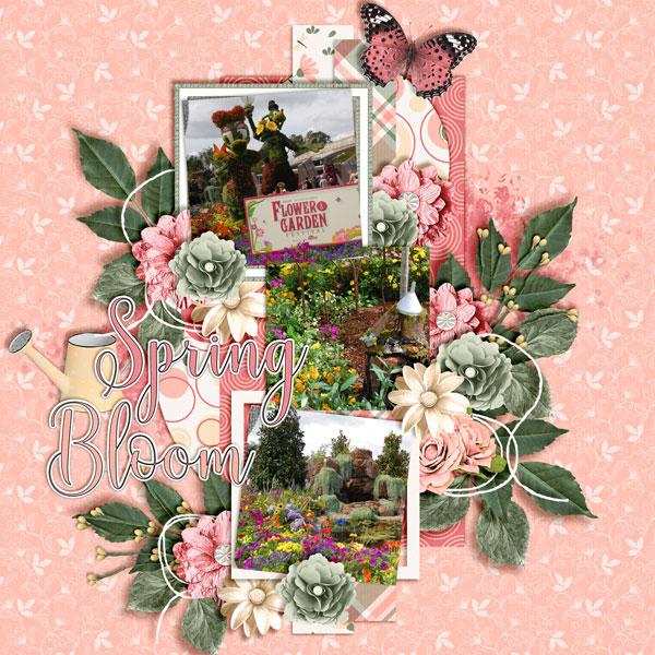 Spring-Bloom1