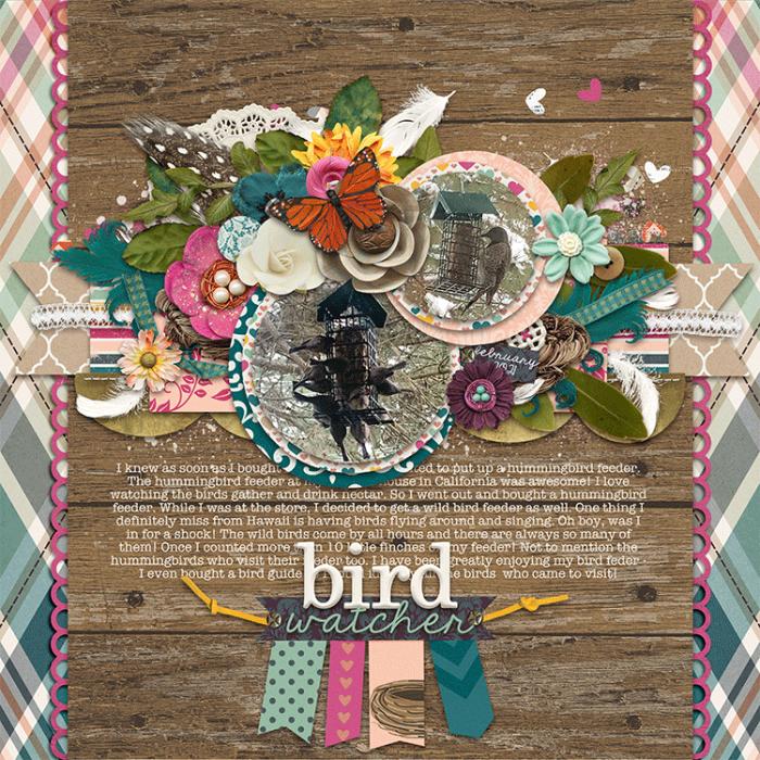 birdwatcher_web