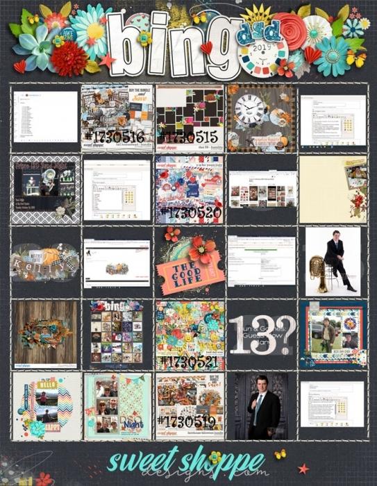DSD Bingo Card 2019
