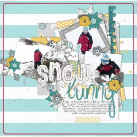 021812-snow-bunny.jpg