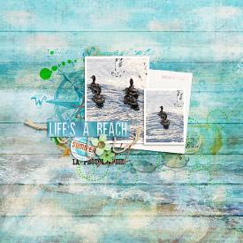 0715-SOSN-beachscape.jpg
