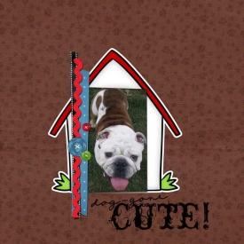 10-30-09_Cute-Dog.jpg