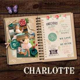 13-10-27-charlotte.jpg