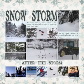 14-Snow-Storm-2web.jpg