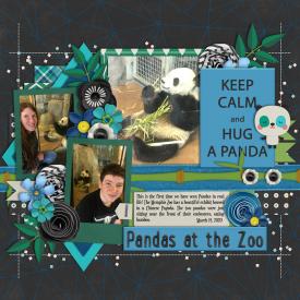 2-New-Designer-Pandas-at-the-Memphis-Zoo-for-web.jpg