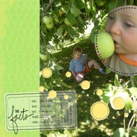 2008-08-04picking-apples.jpg