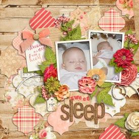 2011_03_17-Sweet-Sleep.jpg