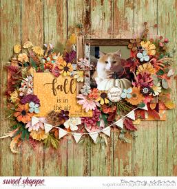 2012-11_pd-AutumnPleasures_pd-Temptations3_babe.jpg