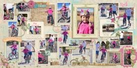 20140126_10_BikeCollage_web.jpg