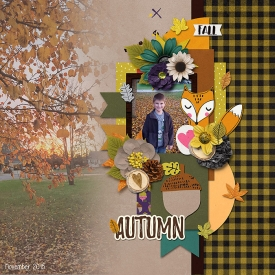 2015_NOV_Autumn_WEB.jpg