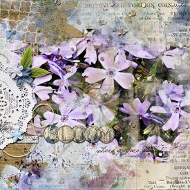 20160527-bloom-where-planted-web.jpg