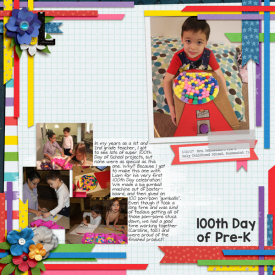 2017-01-26-Liam-100th-Day-Project-web.jpg