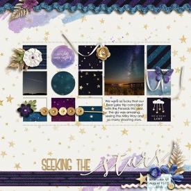 20180812--Seeking-the-stars.jpg