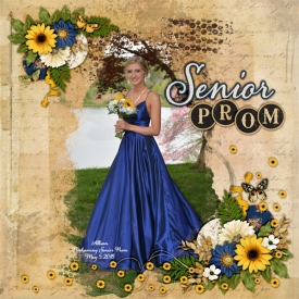 2018_may_allie_prom_kcb_country_sunshine.jpg
