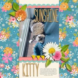20190603--Sunshine-kitty.jpg