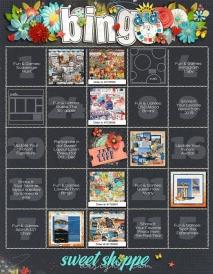 2019_DSDbingo-web.jpg