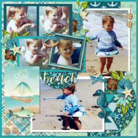 2020-06_-_tinci_-_My_life_in_photobook_27_-_DSI_-_coastal.jpg