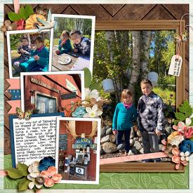 2020-09-05-Kahiltna-Birch-Works-700-web.jpg