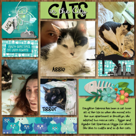2020_06_Sabrina_s_Cats_450kb.jpg